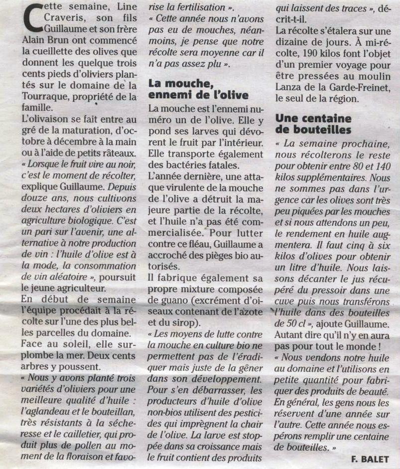 article VM Olives 15 - 2